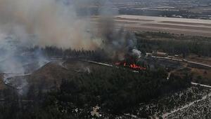 Son dakika... İzmirde ağaçlandırma sahasında yangın
