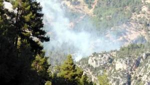 Tarsusta orman yangını