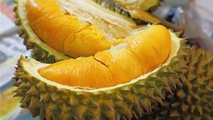 Bu meyve dünyanın en ilginç meyveleri arasında