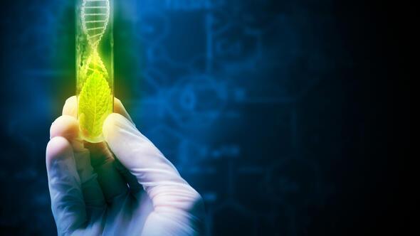 """""""Yükselen"""" tıp teknolojisi"""