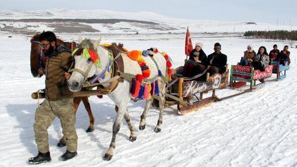 Doğu Ekspresi, atlı kızaklara ilgiyi artırdı