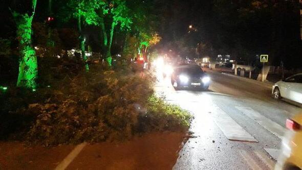 Malatyada ağaç dalı devrildi, yol kapandı