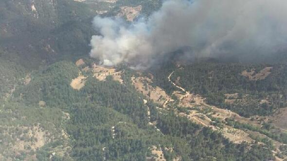 Kahramanmaraşta, yıldırımın isabet ettiği ormanda yangın