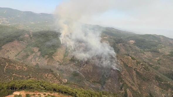 Bayındırdaki orman yangınında piknik ateşi iddiası