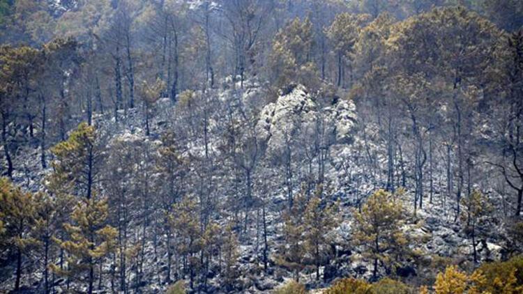 Eroğlu'dan flaş Kumluca yangını açıklaması