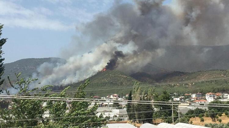 Son dakika... Muğla'dan bir üzücü haber daha! Fethiye'de yangın