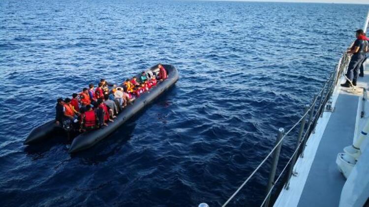 Edirne'de 65 kaçak göçmen yakalandı