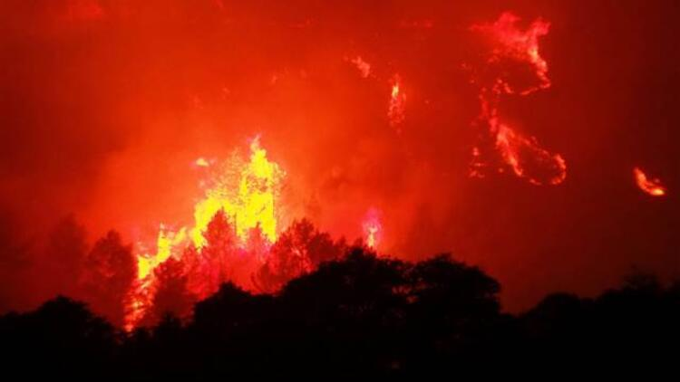 Fransa'da yüzlerce hektarlık ormanlık alan kül oldu