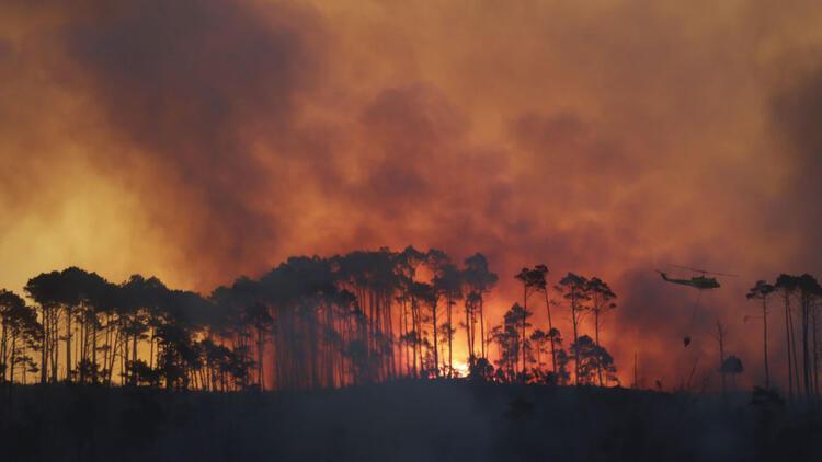 Dünyanın 'akciğerleri' yanıyor! Kontrol altına alınamıyor