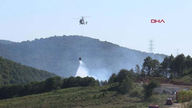 Şile'de orman yangını