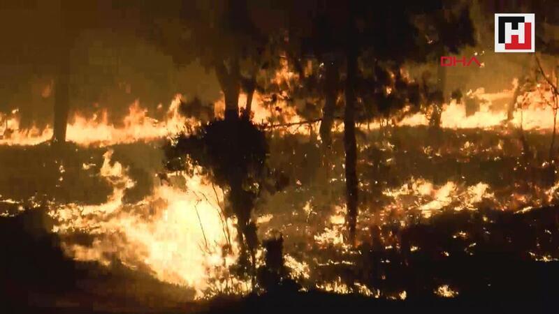 Gelibolu'daki orman yangınına helikopterle müdahale ediliyor