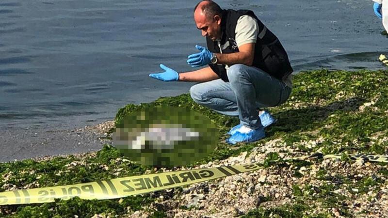 Beylikdüzü Sahili'nde bebek cesedi şoku