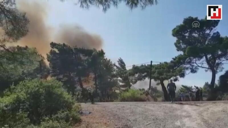 İzmir'in Urla ve Menderes ilçelerinde ormanlık alanlarda yangın çıktı