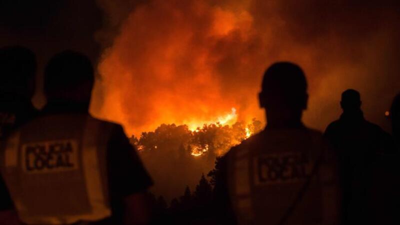 Kanarya Adaları'ndaki orman yangını söndürülemiyor