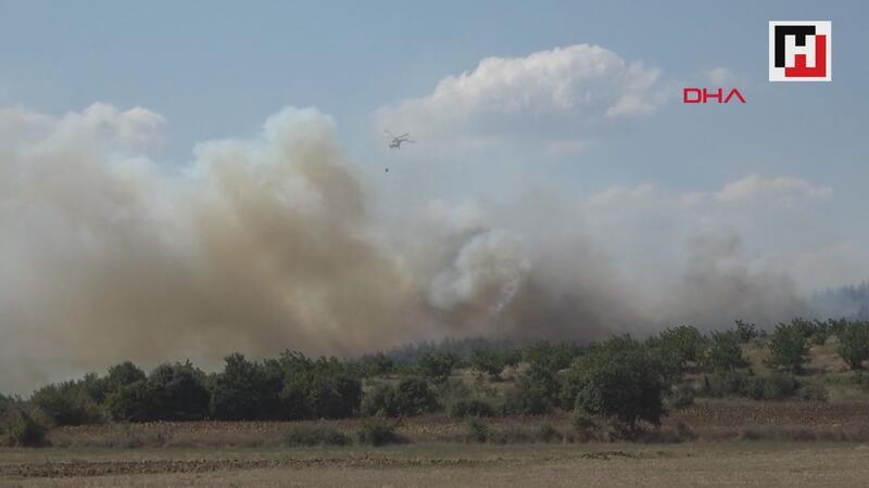 Keşan'da orman yangını